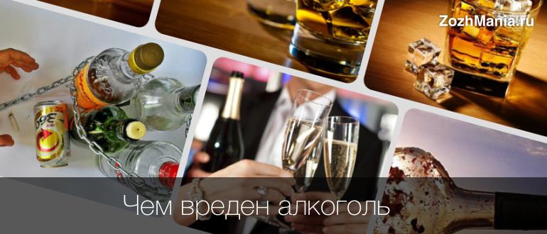 Какой вред наносит алкоголь организму человека