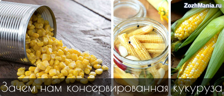 corn-bank-1.jpg