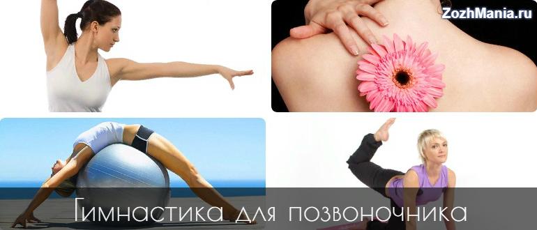 Упражнение лфк для позвоночника и укрепления
