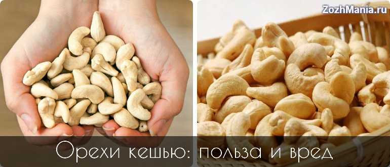 Кешью польза и вред орехов для организма