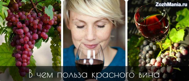 Вино: красное или белое, сухое или полусладкое