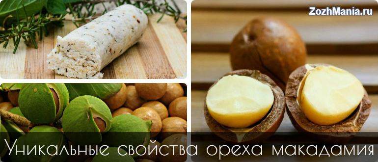 Орех макадамия – польза и вред, полезные свойства и противопоказания