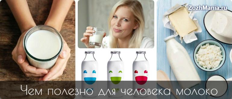 Почему нельзя пить молоко взрослым людям
