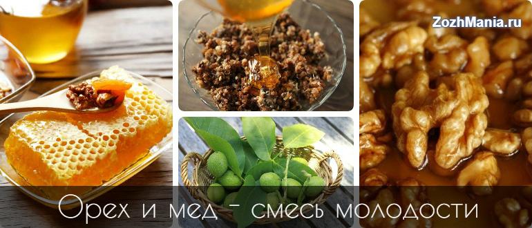 Противопоказания меда грецких орехов thumbnail