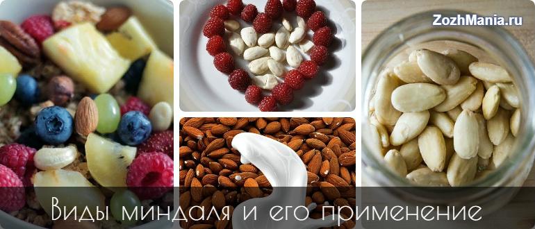 Чем полезен миндальный орех
