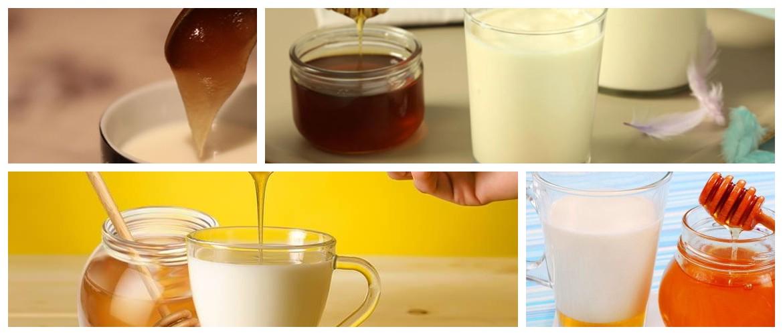 Польза и вред меда с молоком на ночь