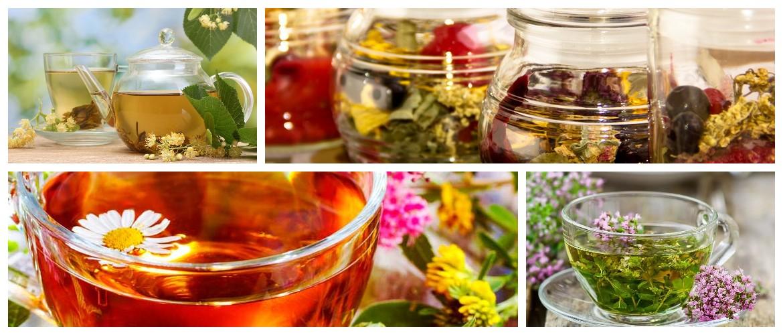 Тонизирующие чаи из трав: рецепты травяных сборов