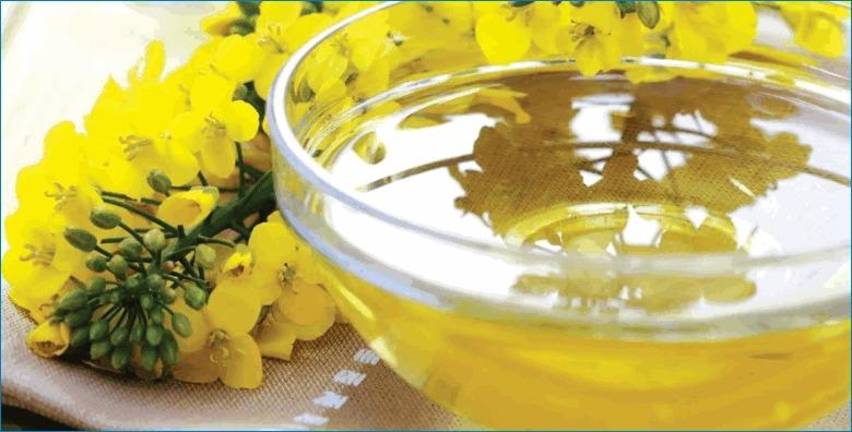 Рыжиковое масло - средство для профилактики