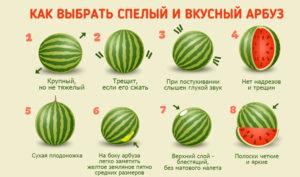 Выбираем только спелые арбузы