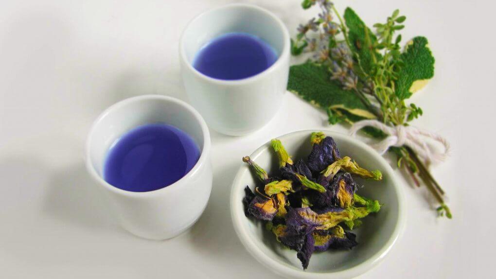Полезные свойства синего тайского чая