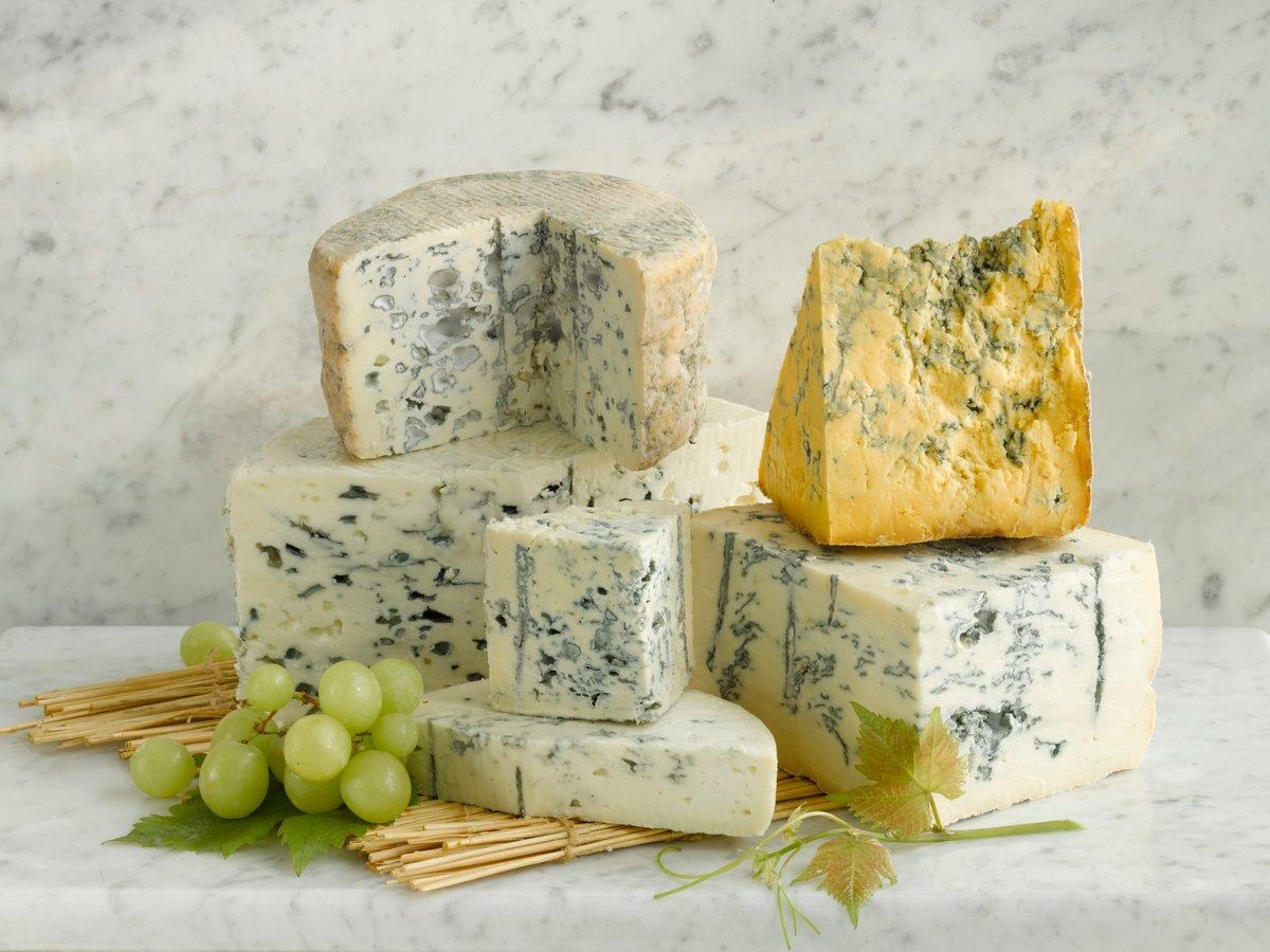 Химический состав сыра с плесенью