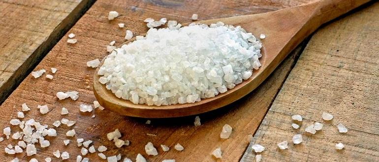 "Влияние ""соли"" на психику человека"